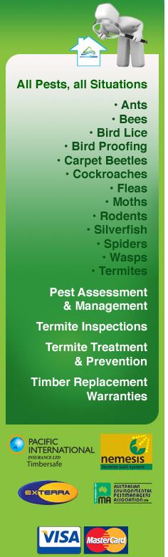 Advanced Basics Termite Pest Management Specialists Pest